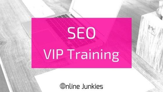 SEO VIP Training